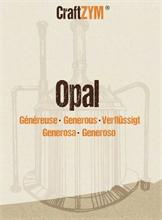 Enzymes Craftzym® Opal Généreuse Brewline®
